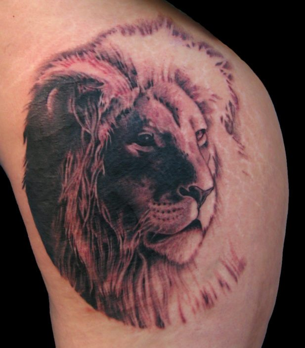 Black & Grey Lion Realistic/Realism Tattoo