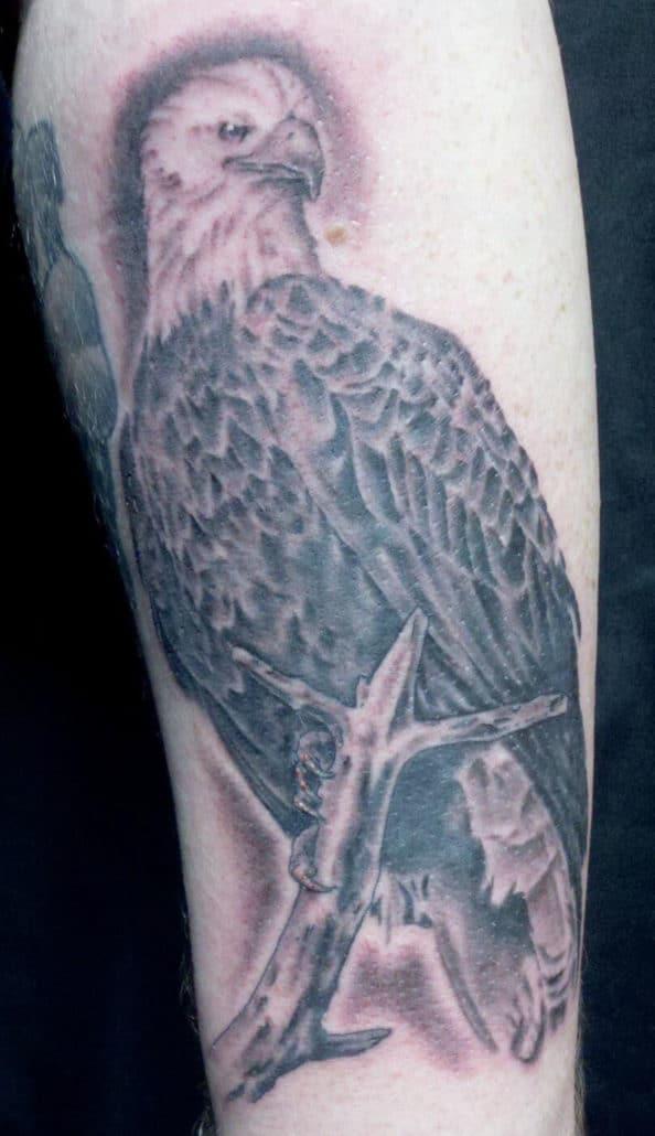 Black & Grey Hawks/Eagles Tattoo